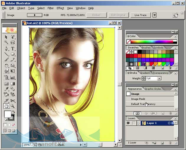 Adobe Illustrator 11 Direct Link Download
